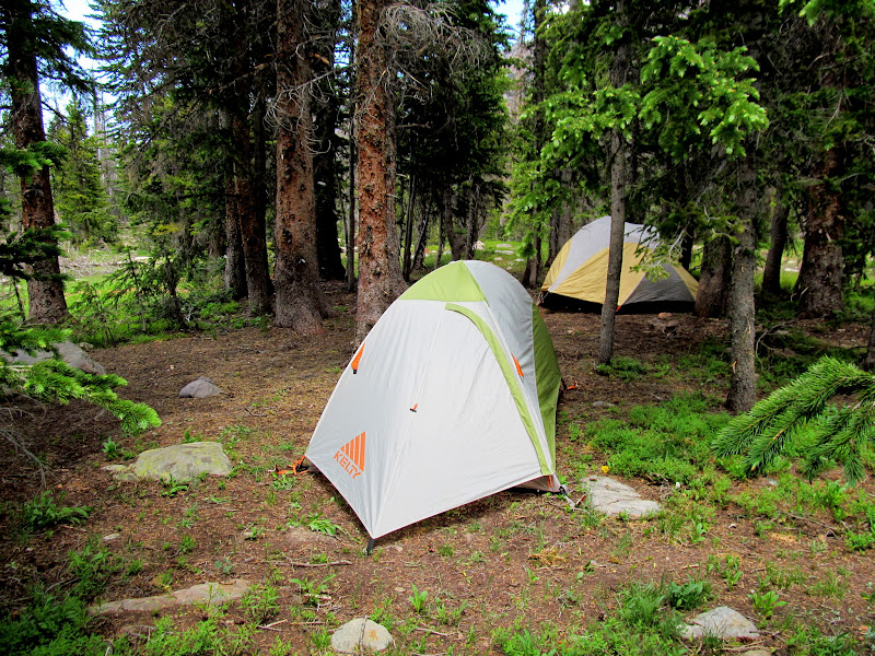Photo: Tents in the trees