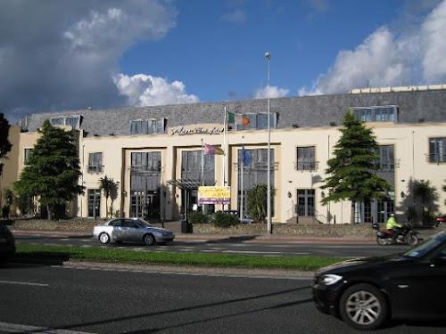 Photo Stillorgan Park Hotel