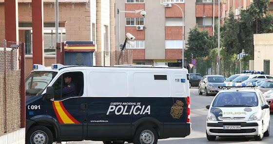 La Policía Nacional decomisa 155 plantas de cannabis en Las Chocillas