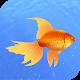 Download Мой аквариум. Пресноводные рыбки. For PC Windows and Mac