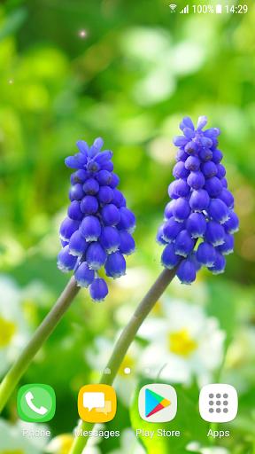 Beautiful Spring Flowers Live Wallpaper 1.0.4 screenshots 5