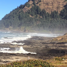 Photo: From a stop at Cape Perpetua yesterday.