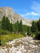 Photo: Mała Zimna Woda na powierzchni jako stały strumień  pojawia się dopiero w Wielkim Łomnickim Ogrodzie.