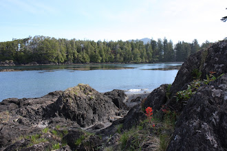 Photo: Uclulet - Wild Pacific Trail