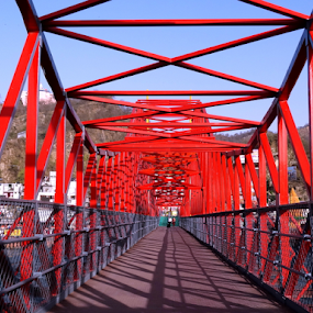 The Red beauty..... by Gautam Tarafder - Buildings & Architecture Bridges & Suspended Structures (  )