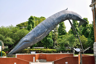 Photo: Kujira (bálna), Ueno park