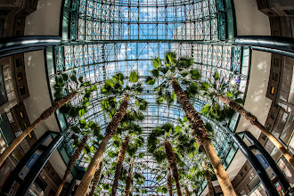 Photo: A fisheye view of the Wintergarden inside the World Financial Center in New York City. My understanding is that this area was severely damaged after 9/11 and the palm trees all had to be replaced. It's a very pleasant place to visit.  #BreakfastClub curated by +Gemma Costa