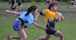 Image result for rippa rugby
