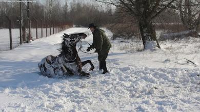 Photo: Zimske radosti...