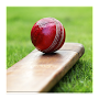 Cricket Dictionary APK icon