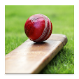 Cricket Dic.. file APK for Gaming PC/PS3/PS4 Smart TV