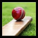 Cricket Dictionary icon