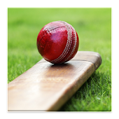 Cricket Dictionary