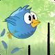 Line Birds (game)