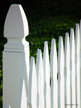 Photo: Picket Fence, East Village, Celebration, FL