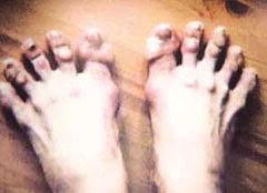 발레리나 강수진씨의 발