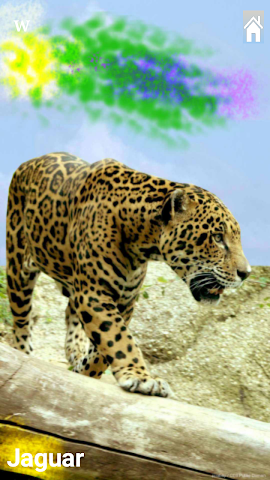 android Kinder Wildtier Zoo Lern&Spiel Screenshot 3