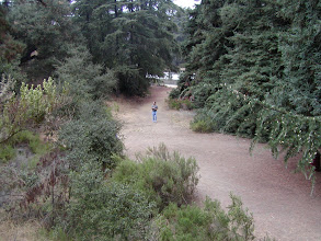 Photo: View looking down from the parking area to the path Andy and Opie walked in the opening credits of TAGS.