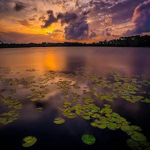 Western Lake 2 2016-08-17 revised.jpg