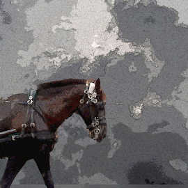 Work Horse by Edward Gold - Digital Art Animals ( digital photography, grey sky, work horse, artistic, brown horse, digital art,  )