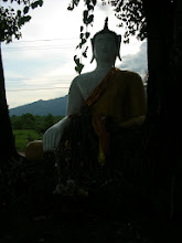 Photo: A wooden Buddha by the side of the road in southern Laos