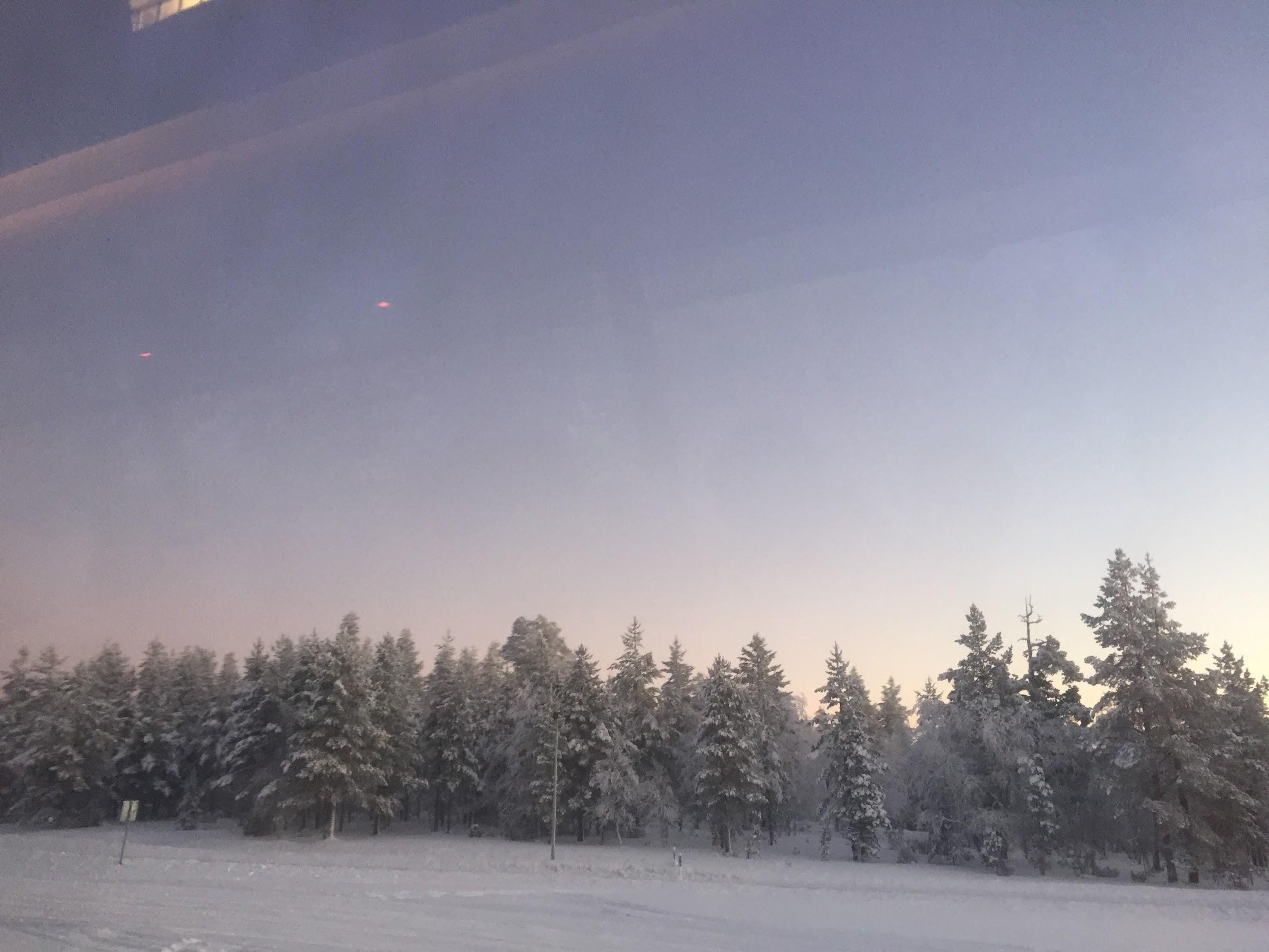 ほぼ忘れかけのフィンランド・サーリセルカ旅行記