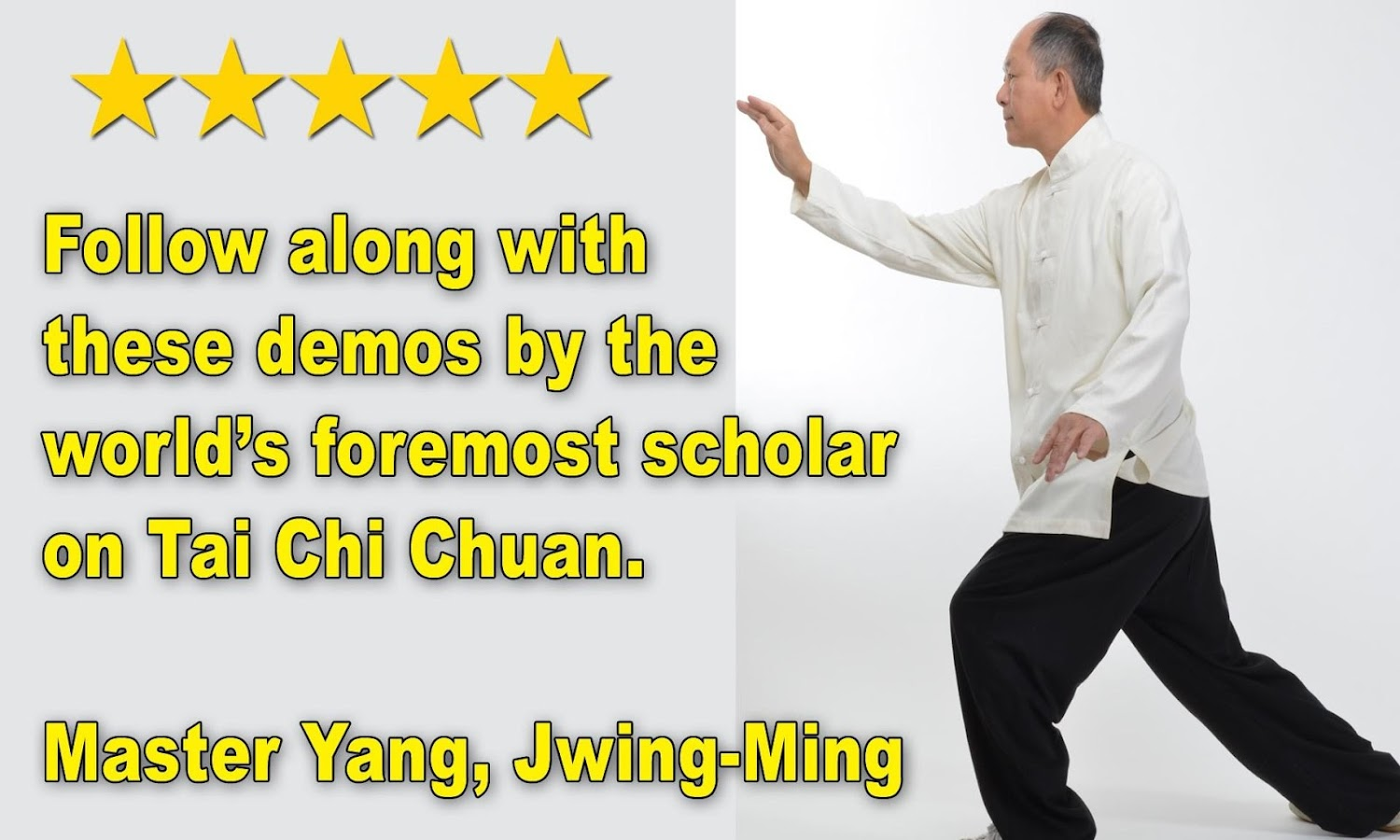 Tai Chi 13 Postures- screenshot
