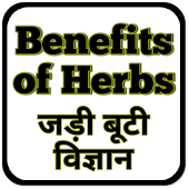 Benefits of Herbs : Jadi Booti