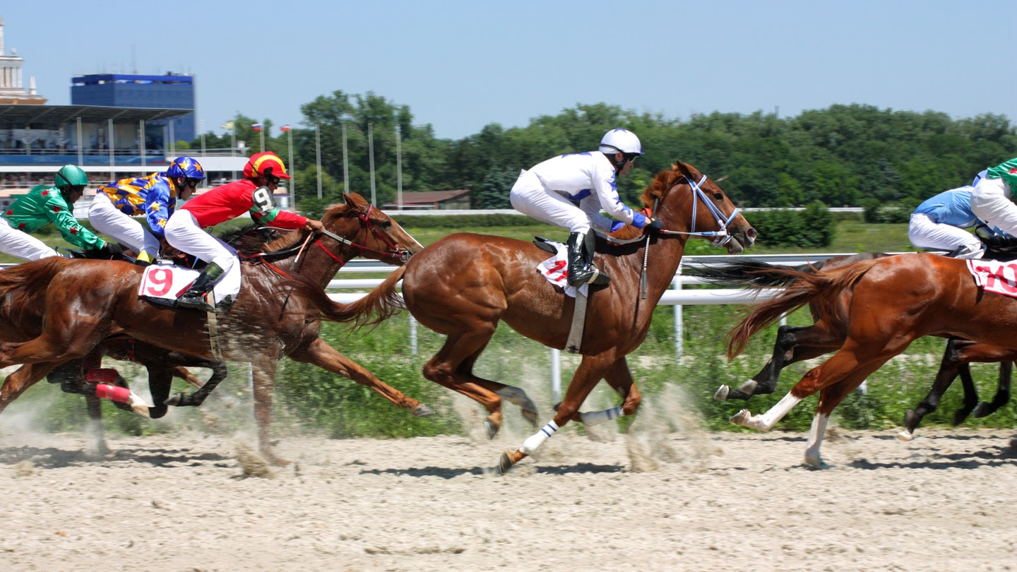 Watch Belmont Stakes Access live