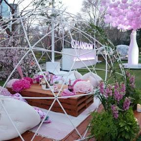 ピンクのスパークリングワインと共に華やかなお花見を楽しむ!「CHANDON Blossom Lounge」が東京ミッドタウンで開催中