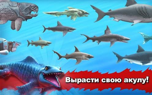 Hungry Shark Evolution
