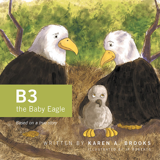 B3 the Baby Eagle cover