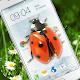 Ladybug in Phone Funny joke Download for PC Windows 10/8/7