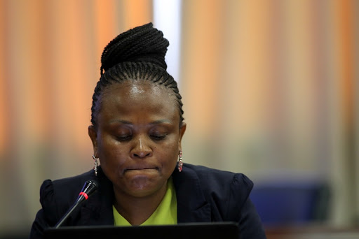 Busisiwe Mkhwebane effectively conceded first Estina probe was a sham, court hears