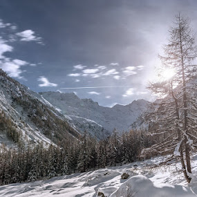 Snow on the forest and mountains by Erik Pettinari - Landscapes Mountains & Hills ( mountains, november, snow, italy )