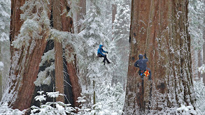 Yosemite thumbnail