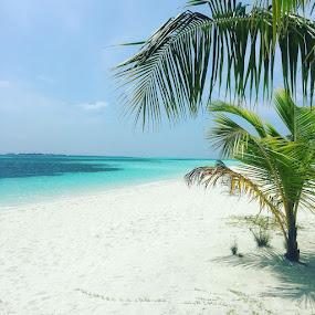 Kuredu Life by Andy Mays - Landscapes Beaches ( kuredu maldives beach andymays inspiredimages sea landscape )