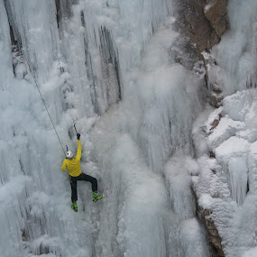 Making it up the ice wall by Heather Diamond - Sports & Fitness Climbing ( winter, ice festival, ouray ice park, ice, ouray, ice climbing, 2012, colorado, canyon )