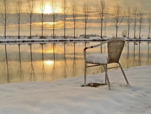 Malinconica assenza...... di www.fioregiallophoto.it