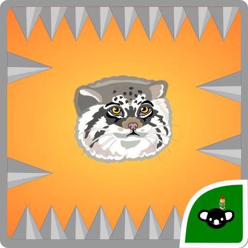 Pallas Cat Spikes Challenge