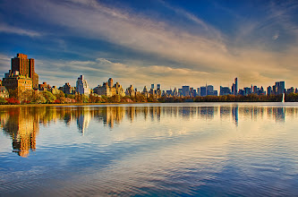 Photo: Split down the middle  Afternoon in Central Park in New York City.