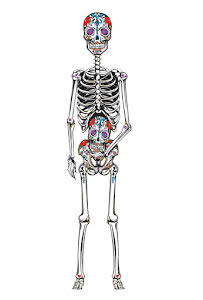 Day of the dead, skelett