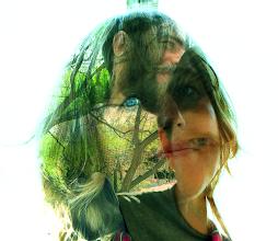Photo: Powerdove Collage by John Dieterich