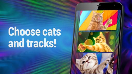 玩免費模擬APP|下載迪斯科猫舞 app不用錢|硬是要APP