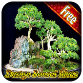 Bonsai tree idea