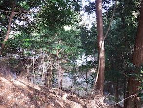 左にお寺の境内