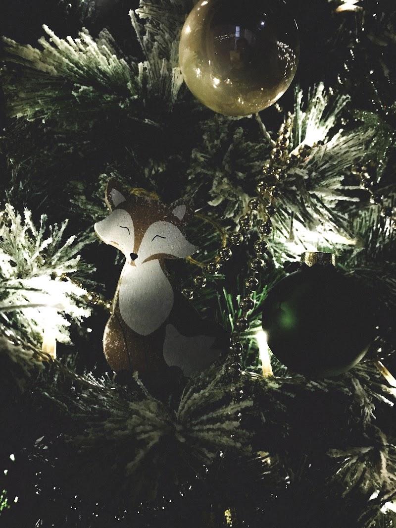 Volpe di Natale  di molly94