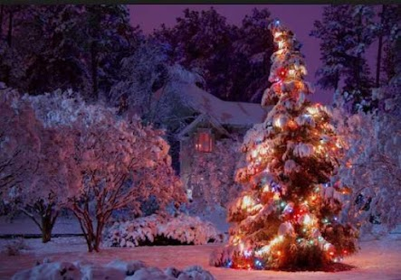 Christmas Desktop Backgrounds - náhled