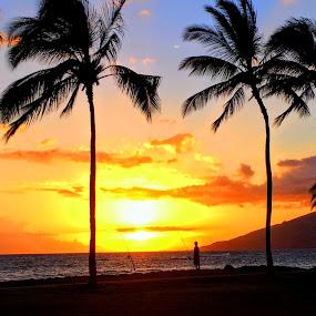 Maui Fisherman at Sunset by Karen Coston - Novices Only Street & Candid ( water, palm tree, maui, sunset, iphone, fisherman, island life, hawaii,  )