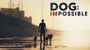 Dog: Impossible thumbnail